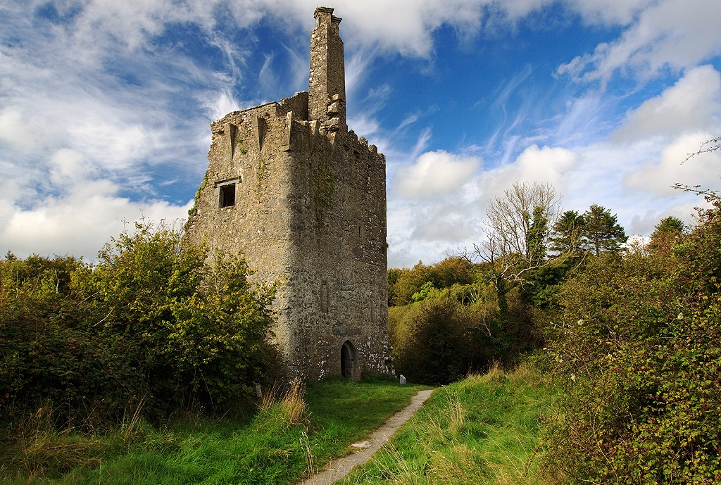Dromore Woods, Co. Clare – a forest filled with history