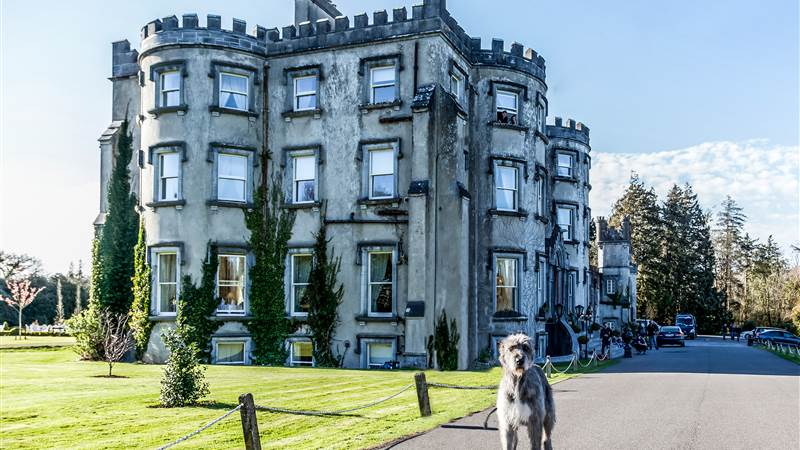Ballyseede Castle, Co. Kerry - a beautiful vacation base to explore Kerry