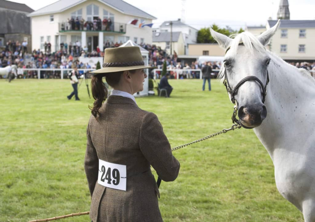 The Connemara pony is a perfect breed for dressage.