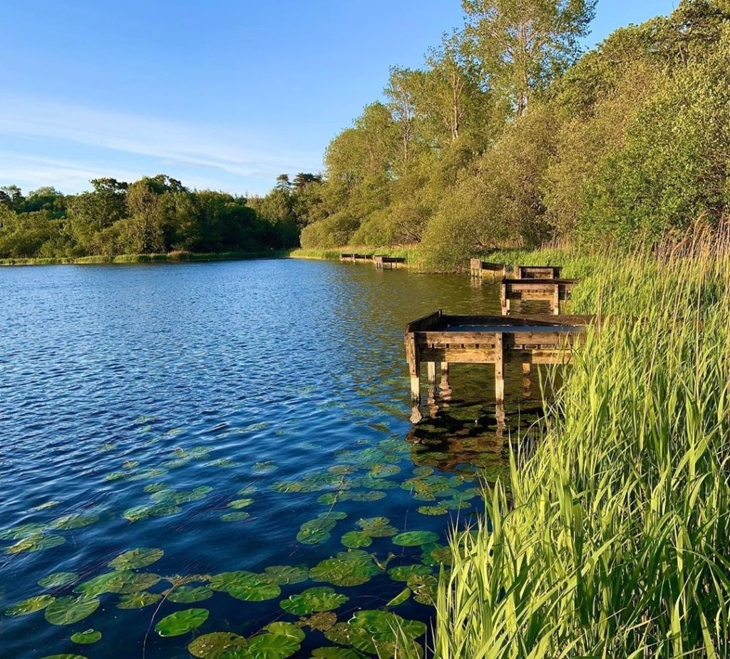 Loughall Country Park is one of the best things to do in Armagh in 2020.
