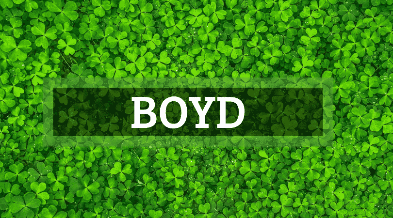 Boyd is another of the top Irish surnames that are actually Scottish.