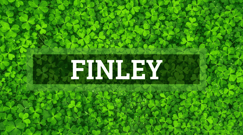 Another of the top Irish surnames that are actually Scottish is Finley.