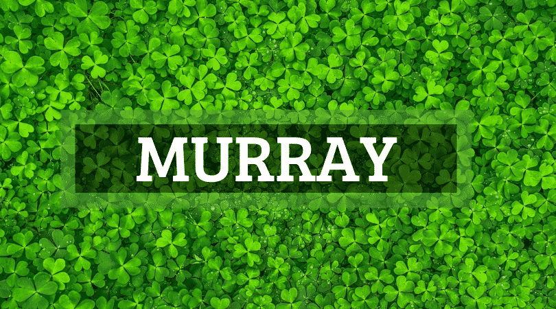 Another of the top Irish surnames that are actually Scottish is Murray.