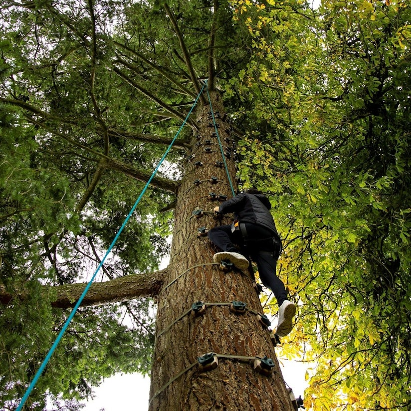 The Castleblayney Outdoor Adventure Centre has great rope-assisted tree climbing activities.