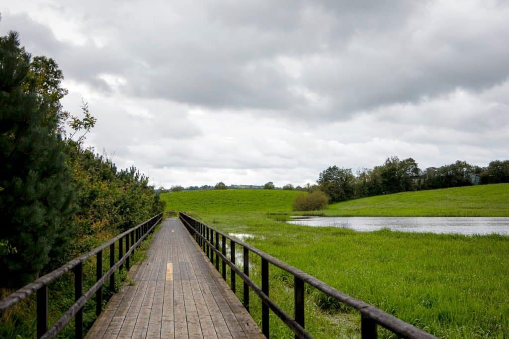 The Ballybay Wetlands Centre is another of the top south Monaghan itinerary ideas.