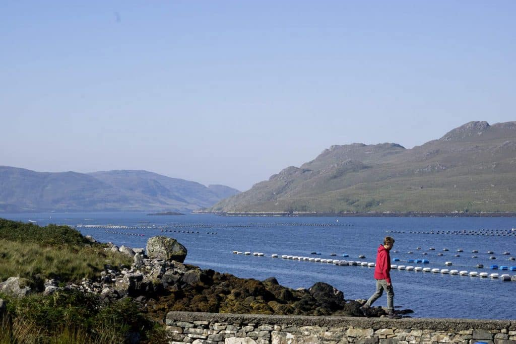 Killary Harbour is one of the best walks in County Galway.