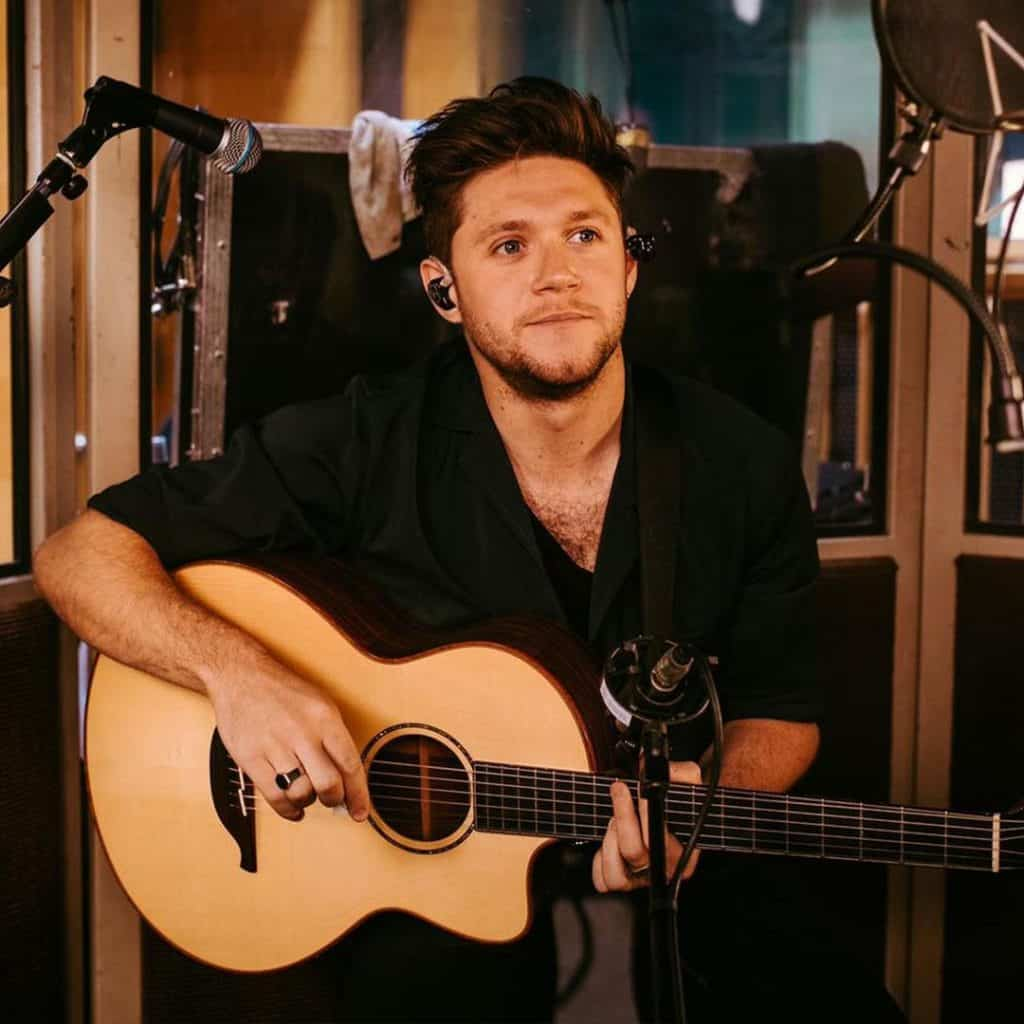 One Direction's Niall Horan hails from Mullingar.