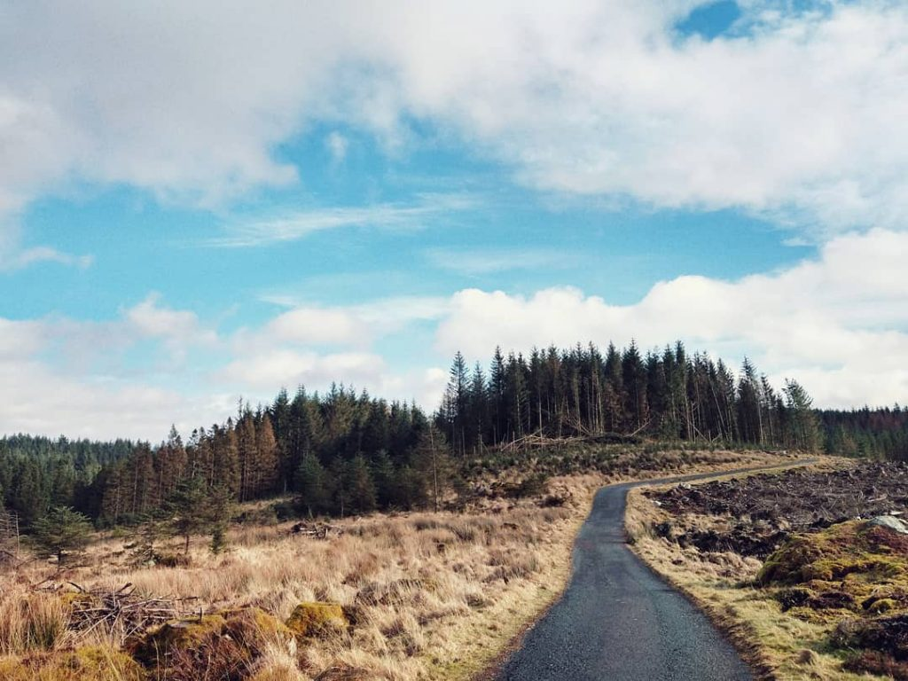 Davagh Forest Park is in the heart of the Sperrins.