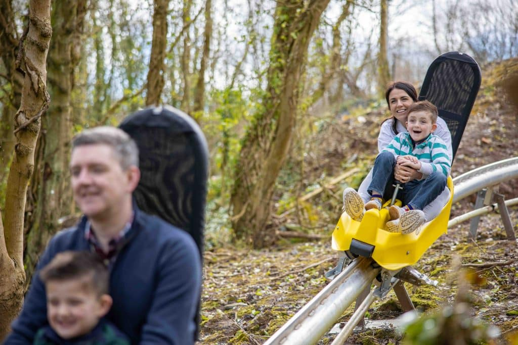 Colin Glen Forest Park is one of the best hidden gems in Northern Ireland.
