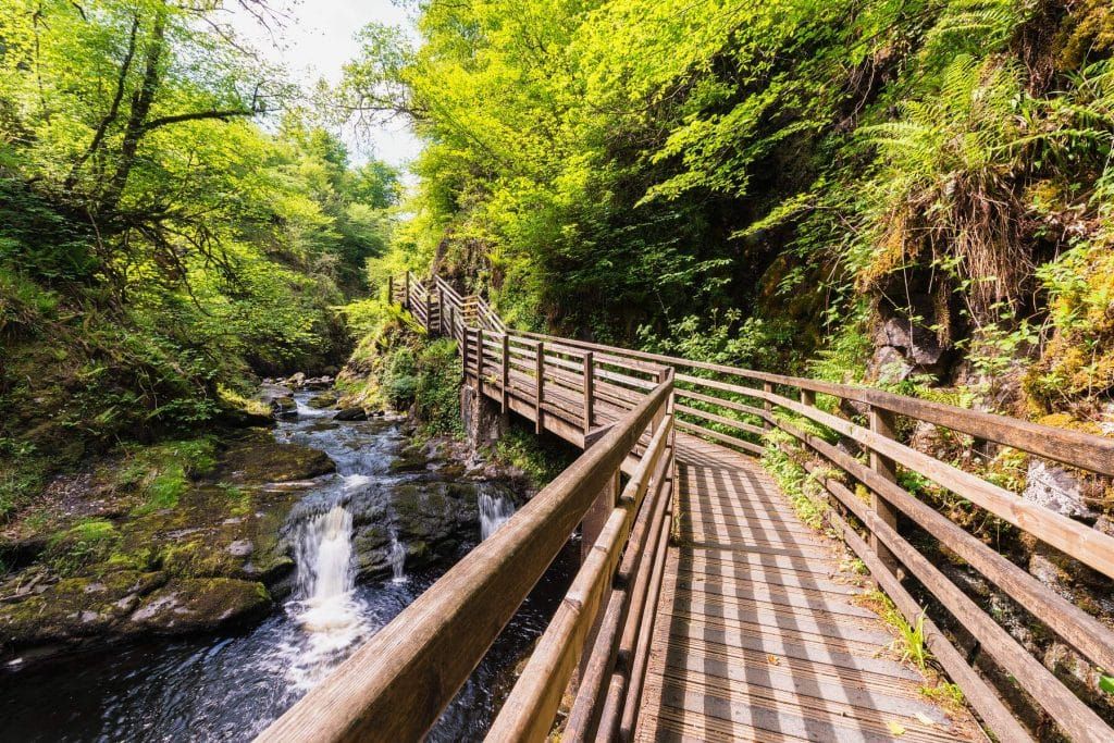 Glenariff Forest Park is one of the best forest parks in Ireland.