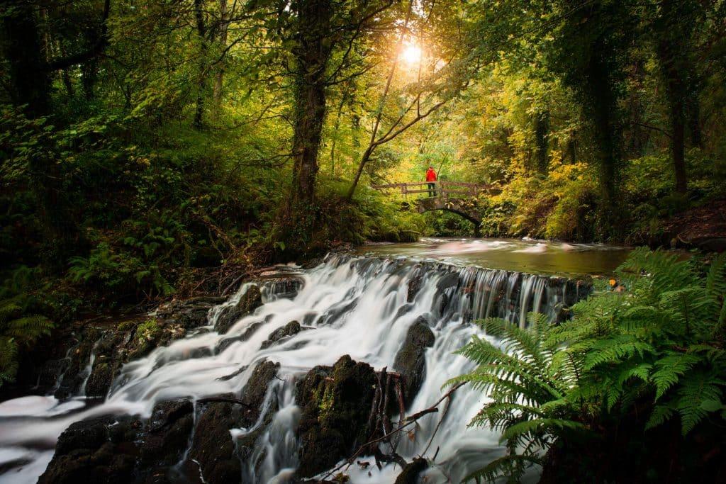 Dún na Rí Forest Park is a must-visit.