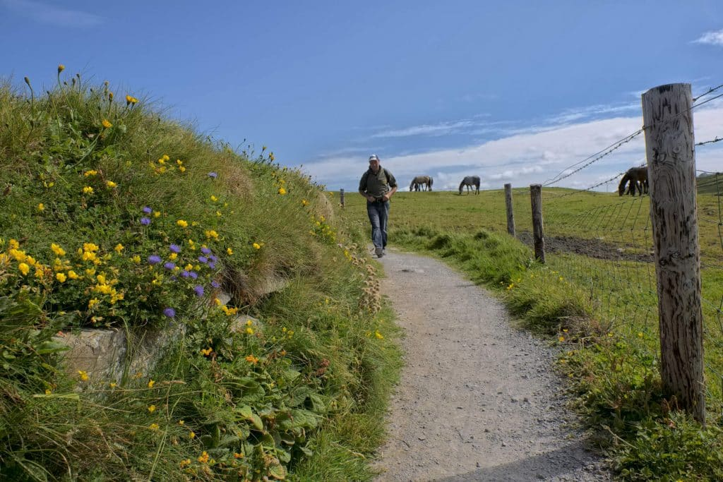 You can see the Cliffs of Moher on the Doolin Cliff Walk.