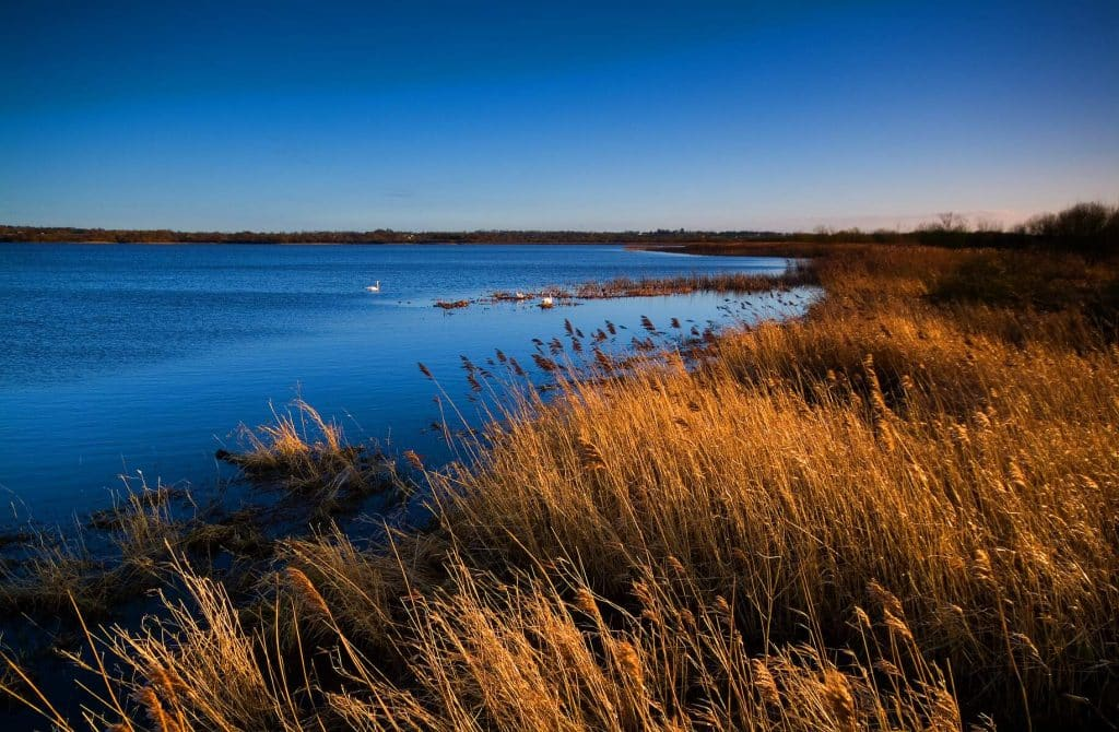 Lough Neagh is one of the most scenic drives in Northern Ireland.