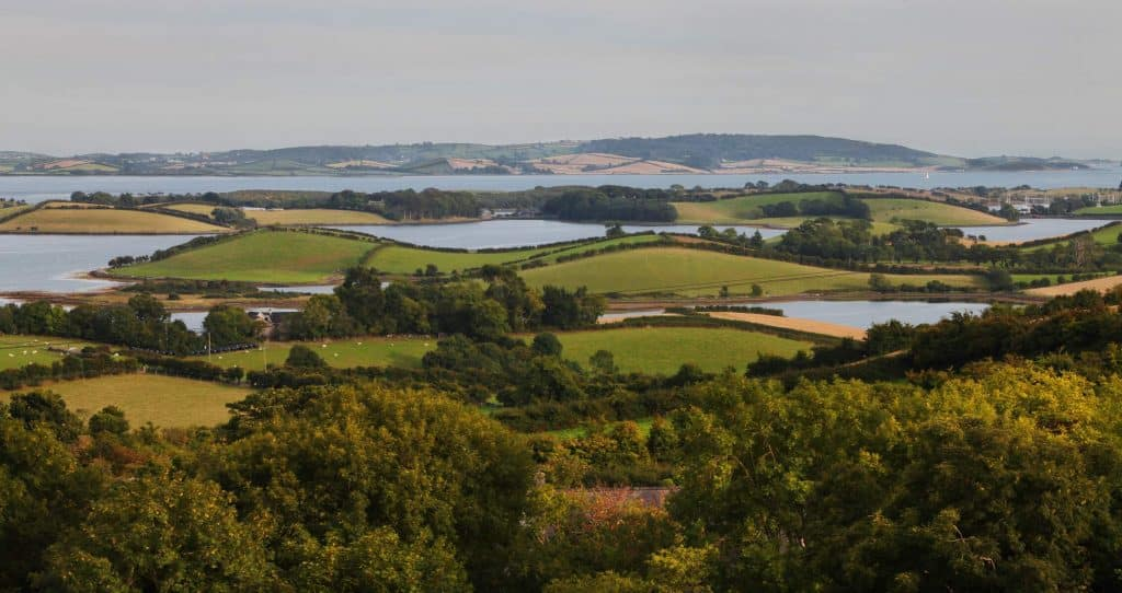 The Strangford Lough Scenic Drive passes through an Area of Outstanding Natural Beauty.