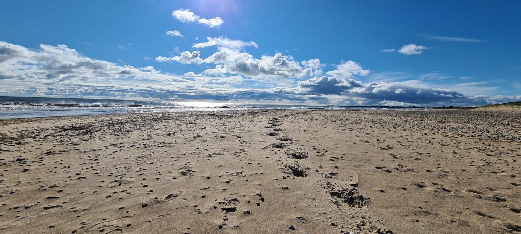 Things to know about Brittas Bay.