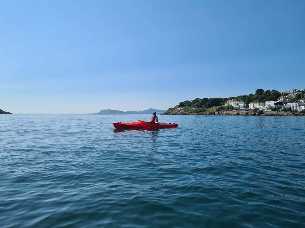 Go seal-spotting at Dalkey.