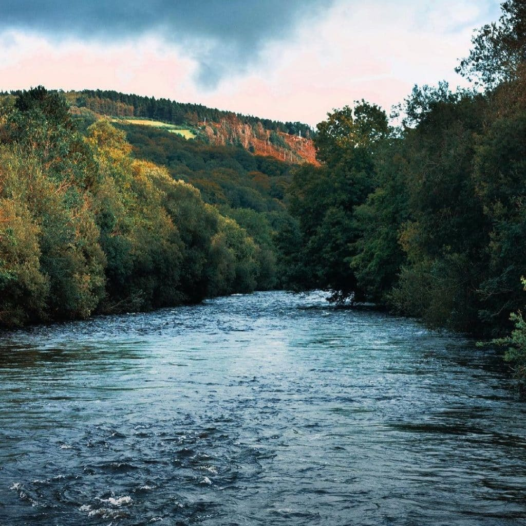 The Meeting of the Waters is one of the best hidden gems in County Wicklow.
