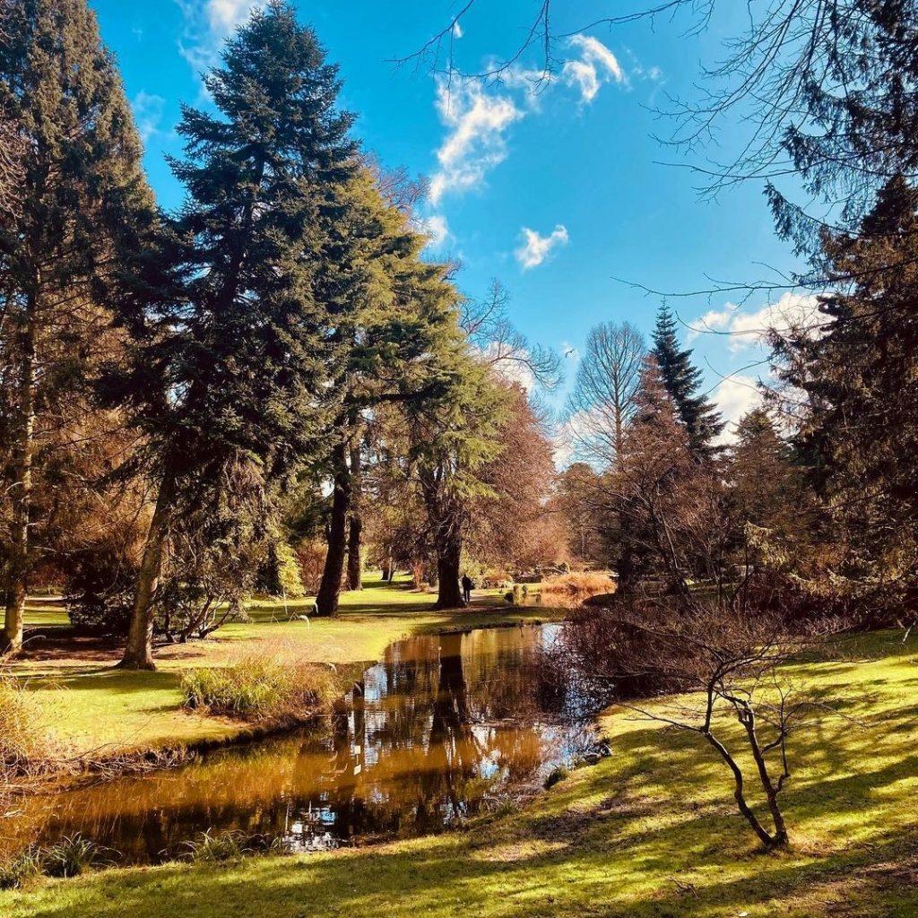 Dublin's Botanic Gardens are a great spot near the city.
