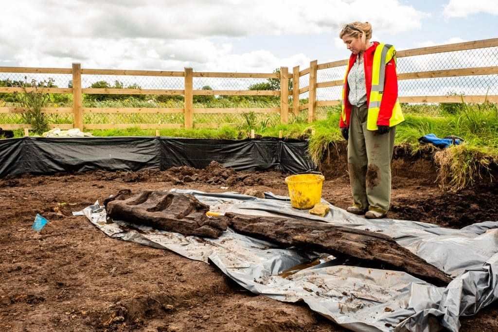 The discovery gives a fascinating insight into Ireland's past.