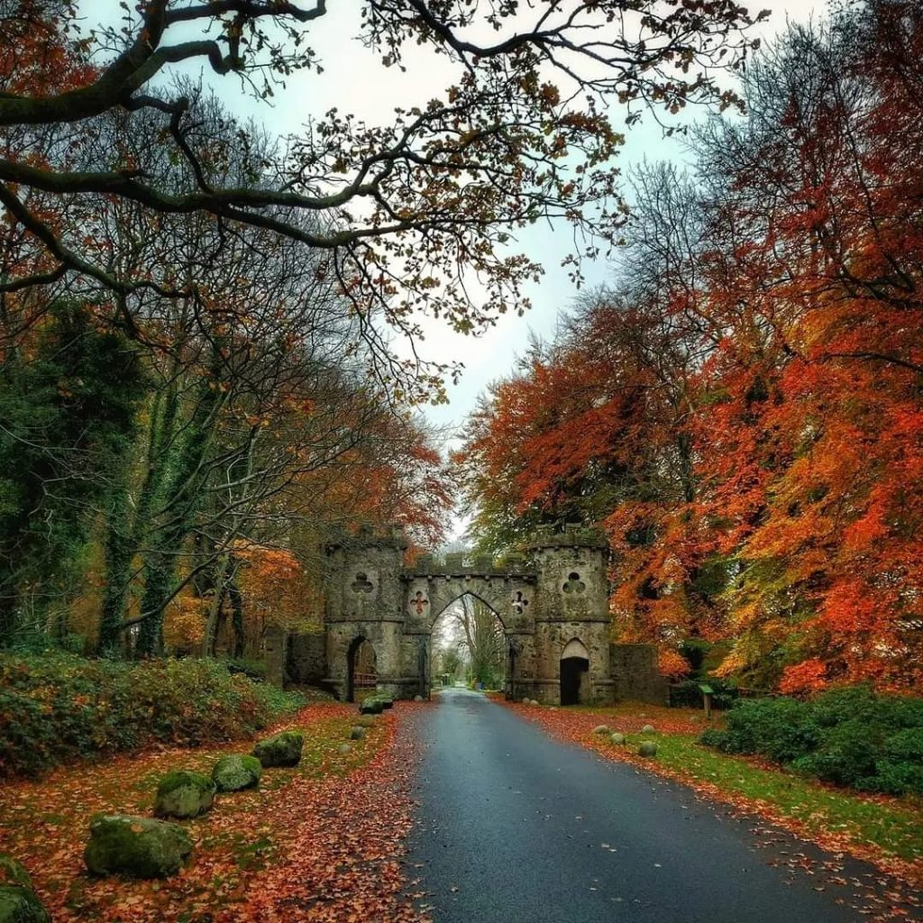 Tollymore Forest Park is one of the best places to visit in Ireland in the autumn.