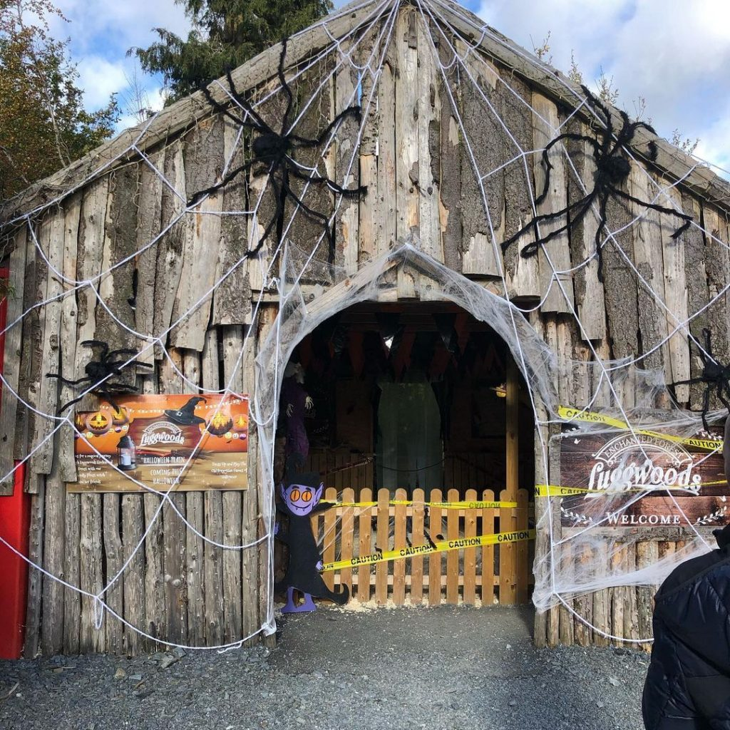 Luggwoods has one of the best Halloween events in Dublin this year..