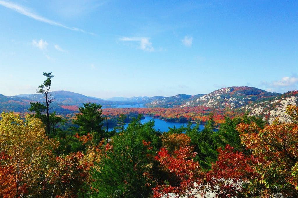 Killarney National Park is one of the best places to visit in Ireland in the autumn.